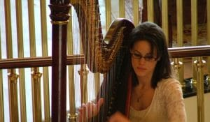 Harpist Drinks Reception and Ceremony